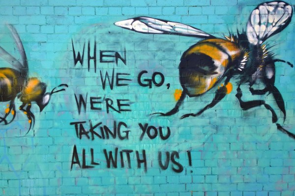 Bee graffiti: When we go, we're taking you all with us!