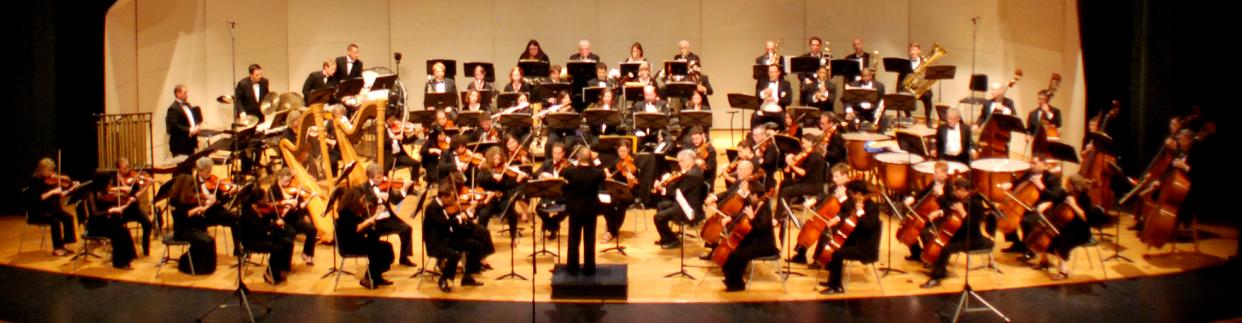Long bay orchestra