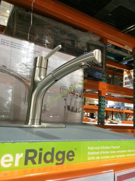 Water Ridge Euro Style Kitchen Faucet – CostcoChaser