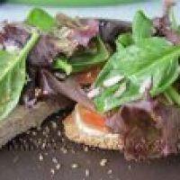 Tostadas de Salmón, Queso fresco y Espinacas