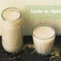 Preparar Leches Vegetales: Leche de Alpiste