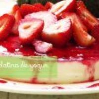 Gelatina de Yogur con Jarabe de Jamaica