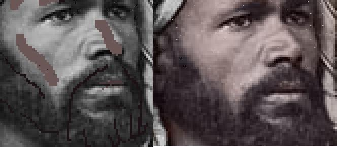 Colorizing Parts Face - Beard