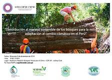 manejo sostenible de los bosques PEQ