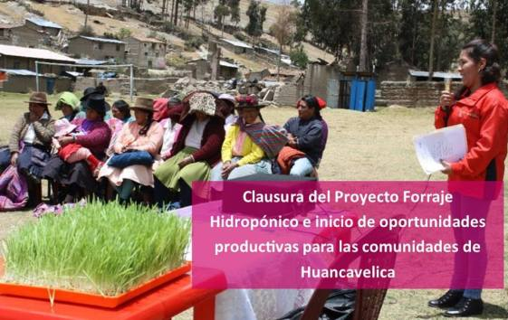 Clausura Proyecto Stromme Foundation Oct 2015