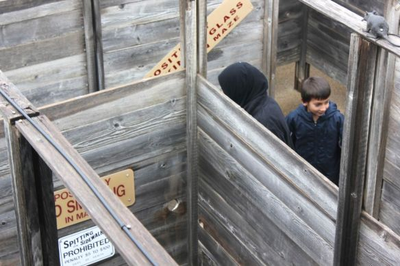 Laith going through the maze at the Stockyards.