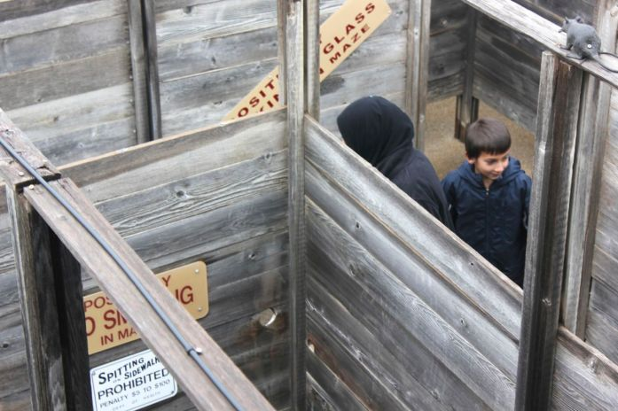 Laith going through the maze at the Stockyards.