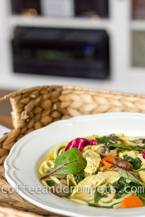 curried chicken noodle soup-2