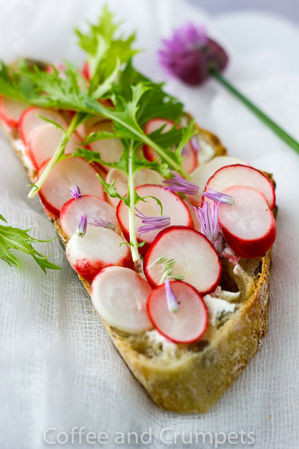 Pickled Radish and Lemon Mascarone Tartine -1