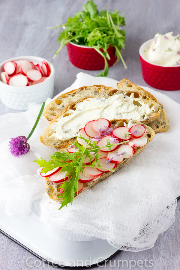 Pickled Radish and Lemon Mascarone Tartine -4
