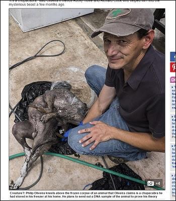 チュパカブラの死骸を発見!UMA(未確認動物)DNA鑑定の結果は!?吸血UMAに迫る!