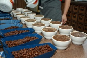 Cupping pour