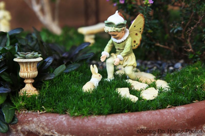 Large Of Fairies For The Garden