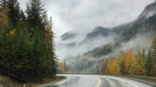 Foggy Road - Colleen Friesen