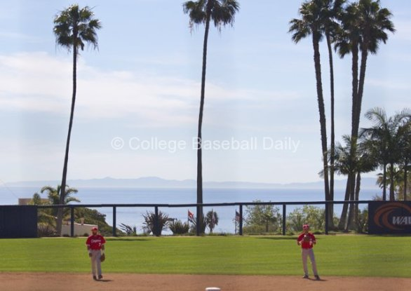Houston Cougars take grounders in front of the palm trees.