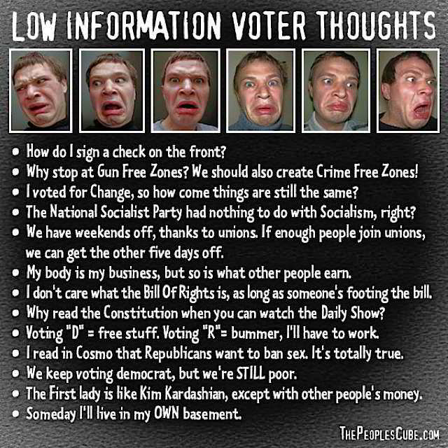 Low Information Voter Thoughts