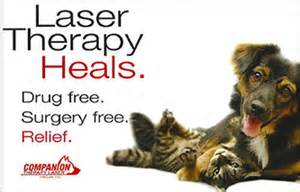 Arthritis treatment with Companion Laser Therapy