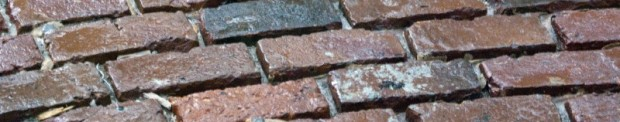 bricks 7