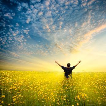 pursuit-of-happiness-L-RzWODZ