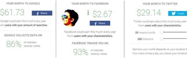 PrivacyFix Net Worth (small)