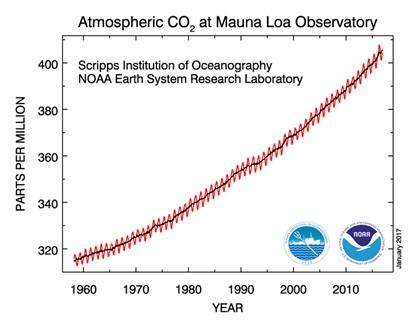 Aumento della concentrazione della CO2 in atmosfera dal 1958 ad oggi, (ScrippsInstitution of Oceanography& NOAA).
