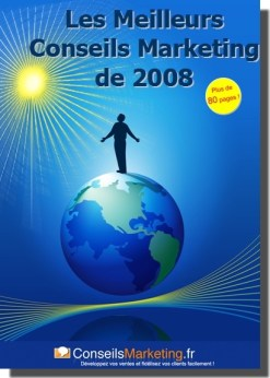ebook les meilleurs conseilsmarketing de 2008