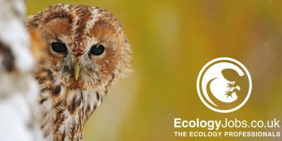 Ecology Jobs is a UK job-site dedicated to ecologists