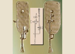 Antonj van Leeuwenhoek developed early evidence to question evolution by disproving a spontaneous origin of life