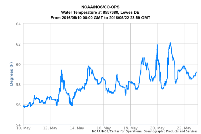 Water temperature at the mouth of Delaware Bay.