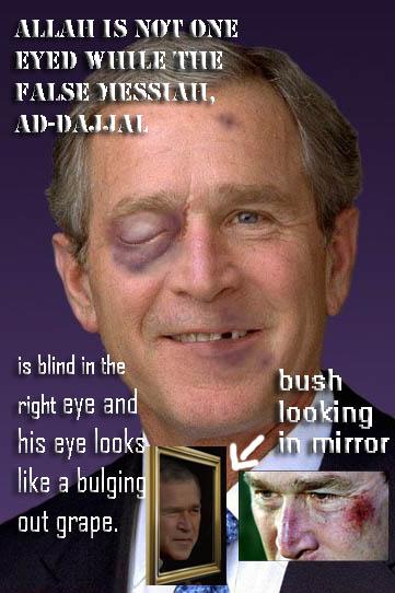 Bush Black eye Mirror