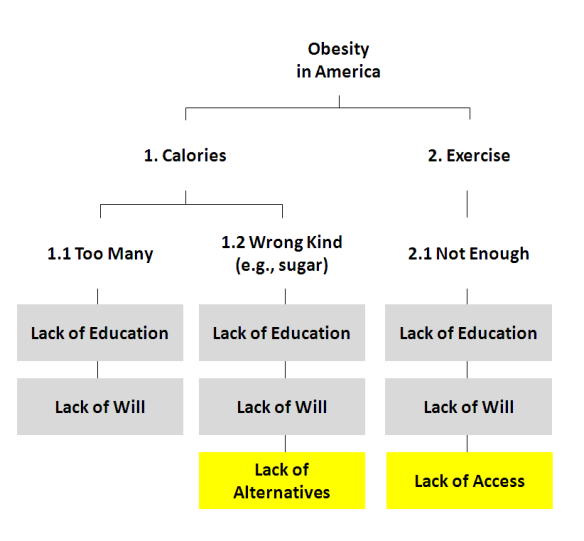 Root Cause of Obesity