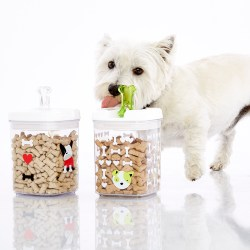 Pristine Good Dog Treat Canister Container Store Treat A Dog Wound Treat A Dog Code