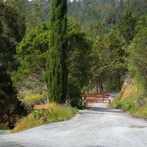 Entrance to Scholastica and back road on the right.
