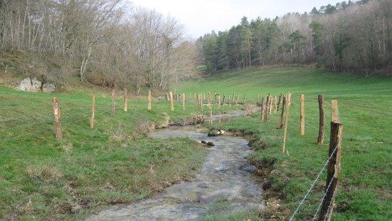 Mise en place de clôtures sur le ruisseau de la Verrerie