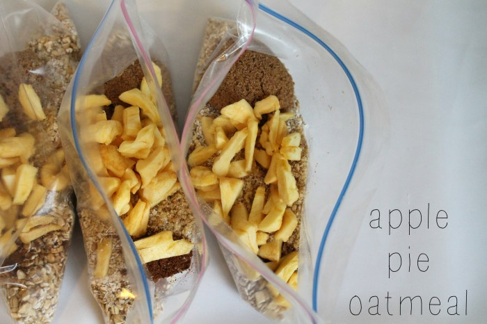 DIY Instant Oatmeal Packets - Apple Pie