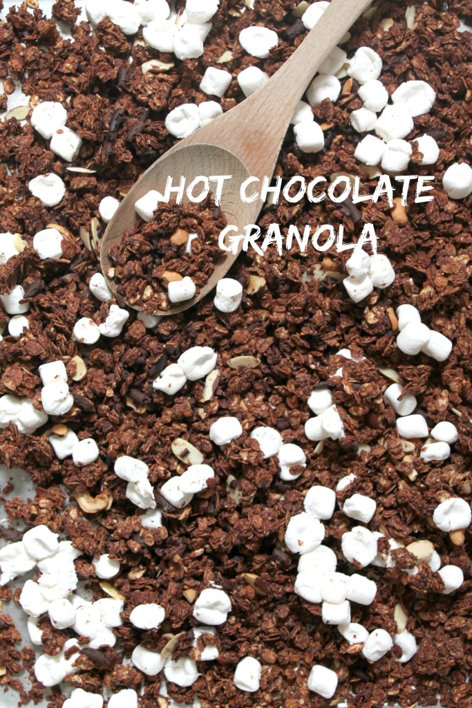 Classic Hot Chocolate Granola hits the spot every time when you're trying to make healthy snacks, but still want them to feel like a treat.  - Get the recipe on CookingWithBooks.net