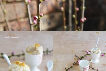 spring_blossoms1