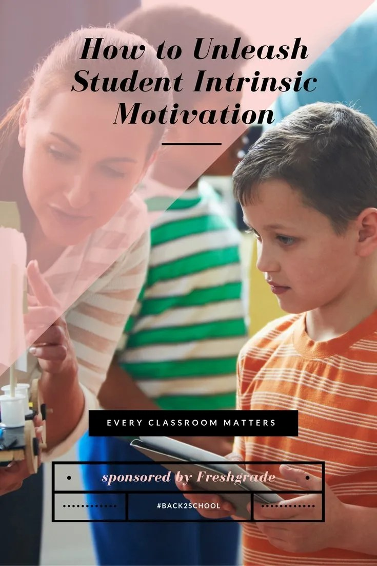 student intrinsic motivation