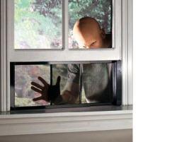 WindowCop