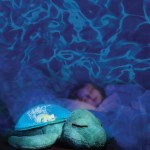 The Tranquil Turtle – Easy Sleep for Everybody!