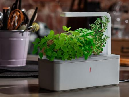 Click & Grow unveils Smart Herb Garden