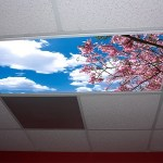 Sky Light Panels will help reduce stress and brighten up your work space
