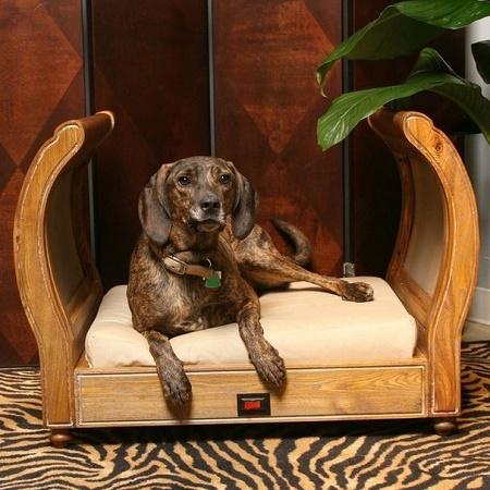 regent pet bed