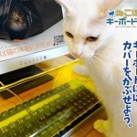 The Neko Pochi Anti-Cat Keyboard Cover will let you work while the kitties play