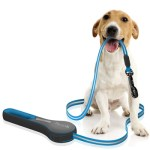 Quirky Kōsoku could be the perfect dog leash