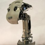 Mertz active vision robotic head from MIT