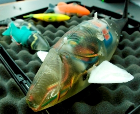 robofish5