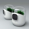 Air Purifier uses plants to clear the air