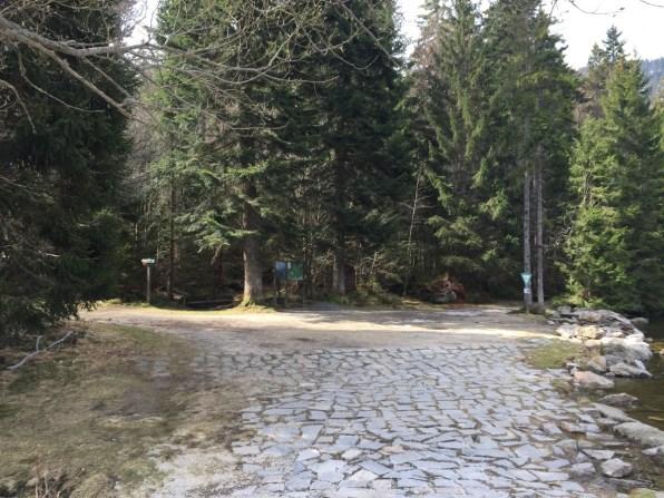 Großer Arbersee – Wanderwege
