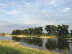 Elbe in Elster